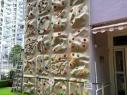 喜訊_6米高攀石牆完成安裝